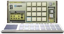 nanoKong-02.png
